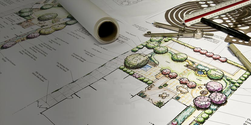betterland-landscape-design